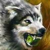 wolk53rus